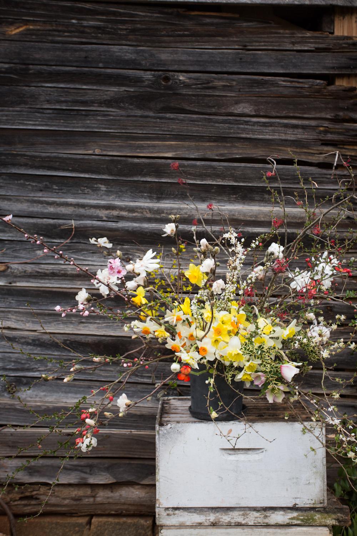 terrain_3_porch_farm_early_spring-2a.jpg