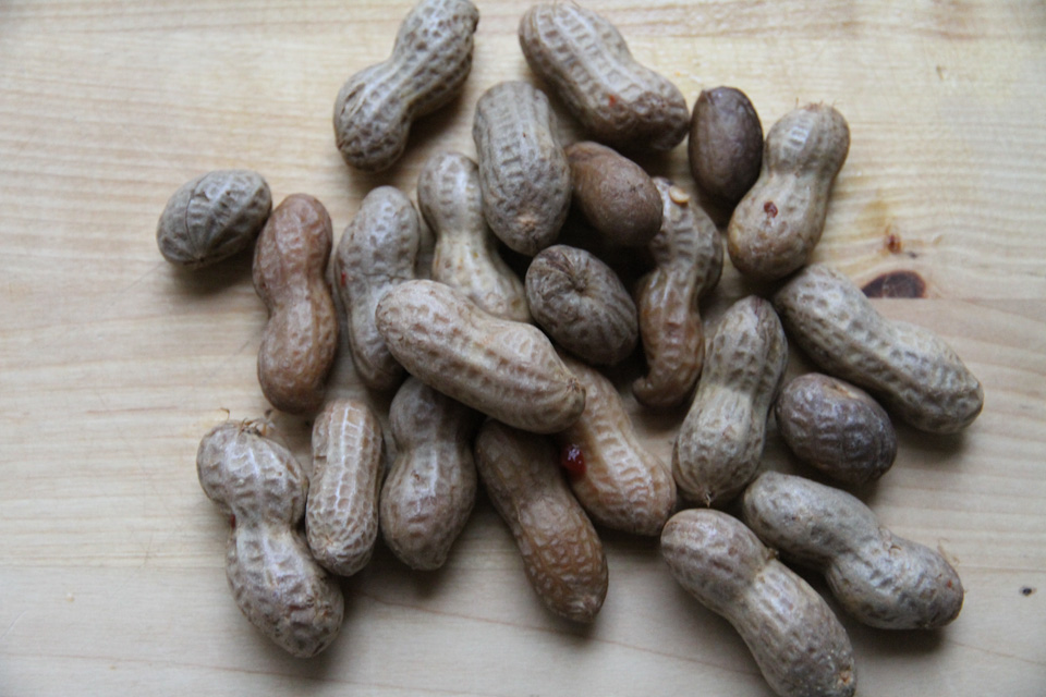 KB_boiledpeanuts-6028.jpg