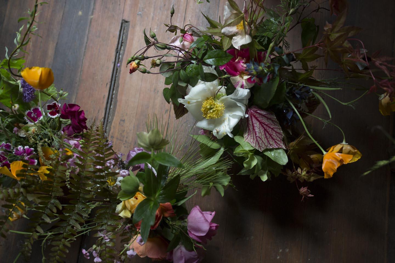 seasonal bloom-6777.jpg