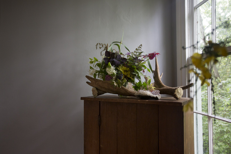 seasonal bloom-6752.jpg