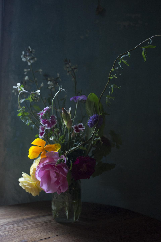seasonal bloom-6762.jpg