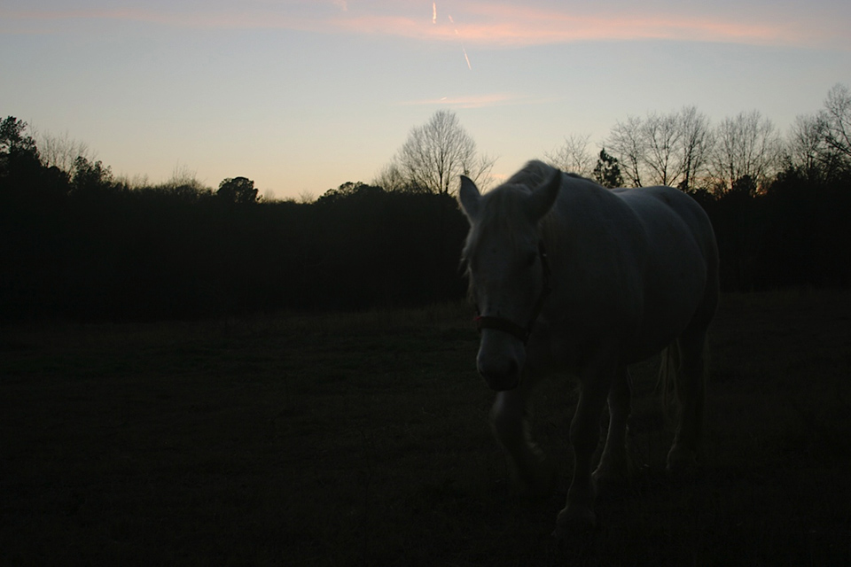 HH-sunsets-5.jpg