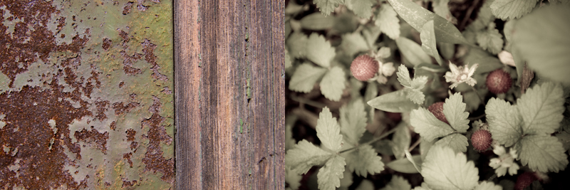 rustandwood.wildstrawberries.jpg