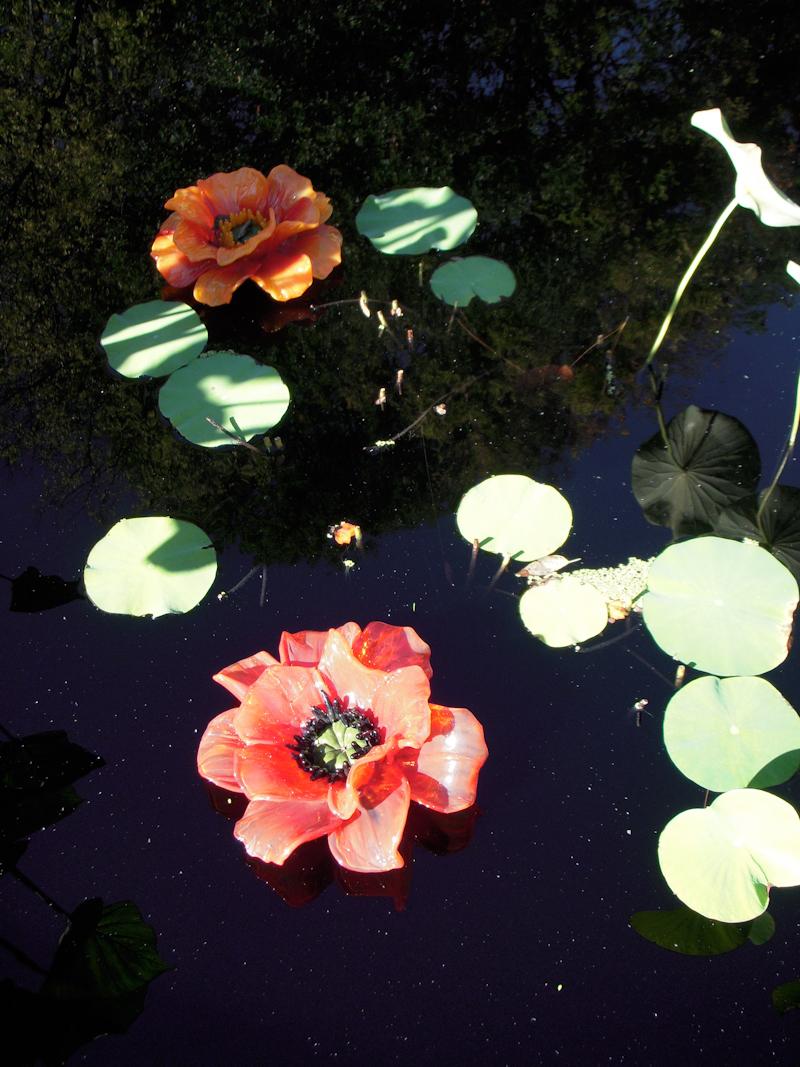 RW_winterflowers-0808.jpg