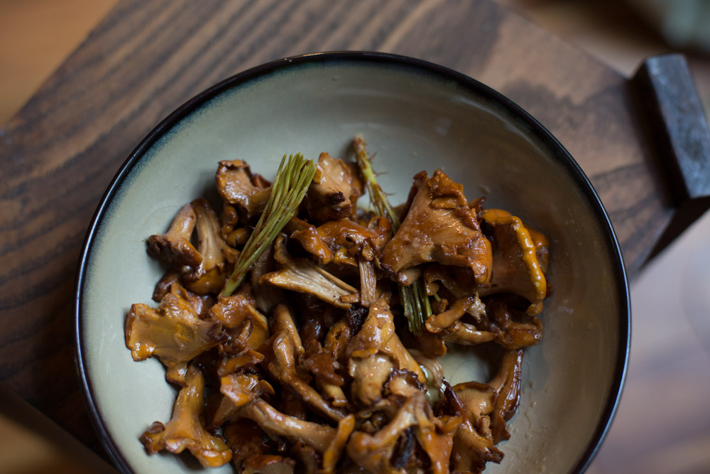 KB_foraging-chanterelles-8460.jpg