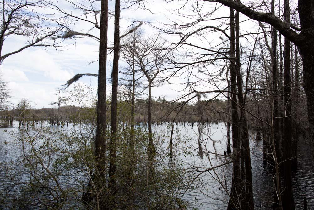 KB_dead-lakes-0189.jpg