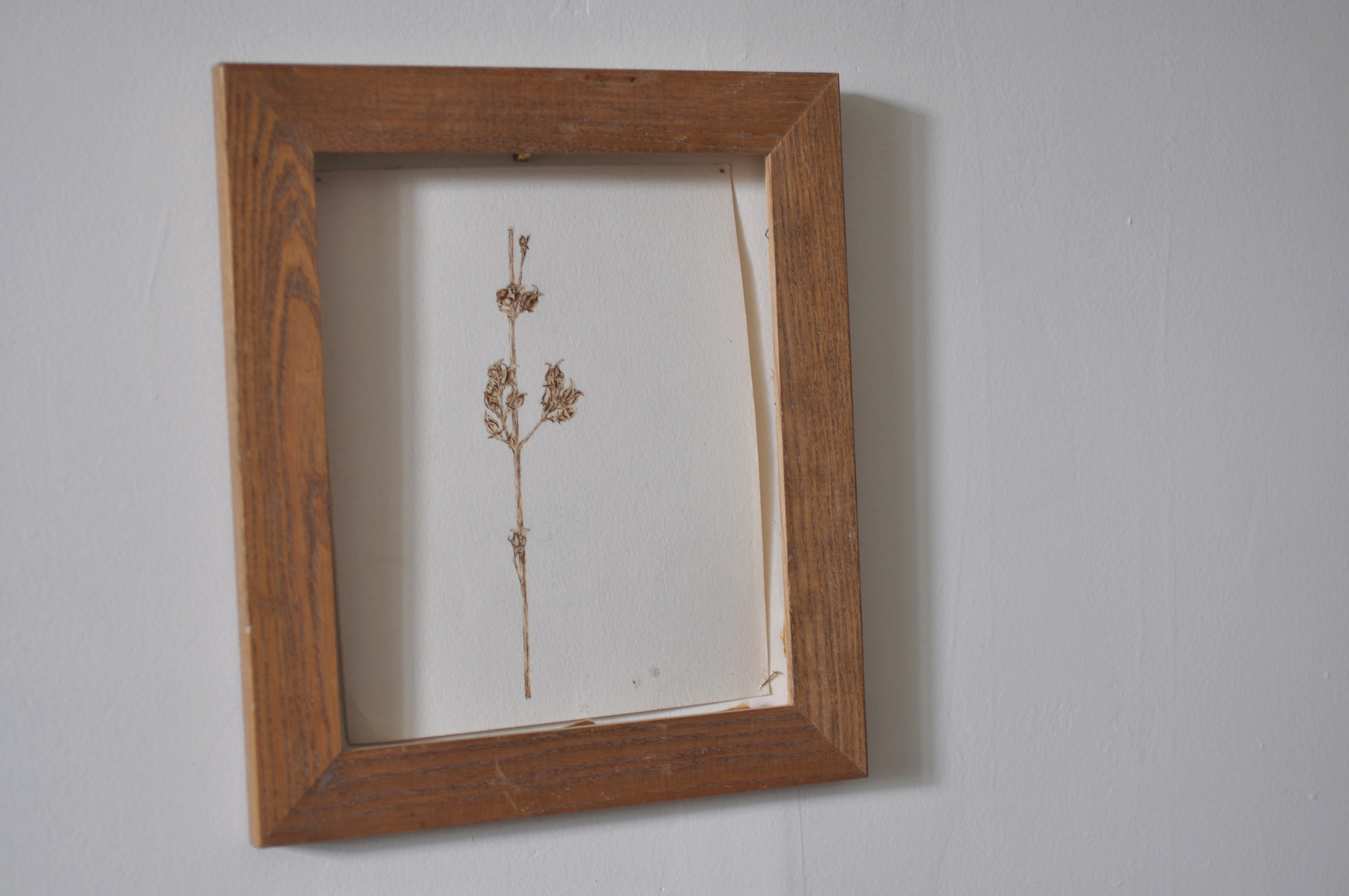 Jess Dunlap pyrography drawing framed.jpg