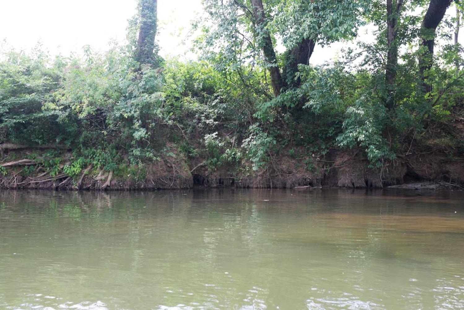 KB_etowah-river-1263.jpg