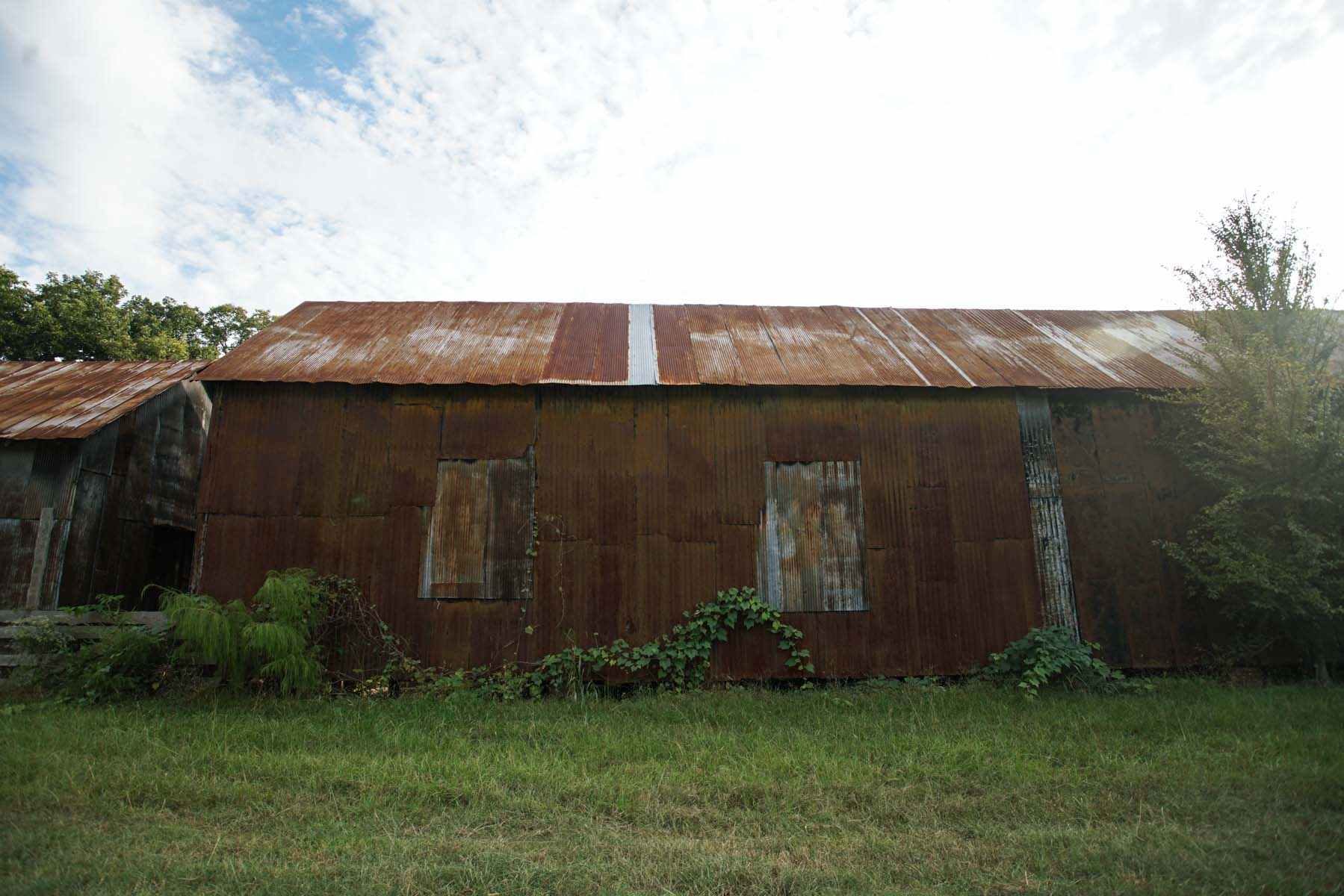 RA_hale county vernacular-07062.jpg