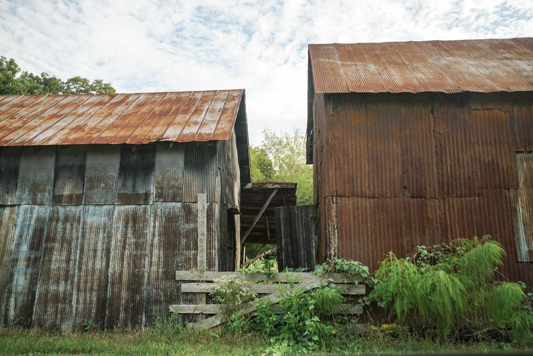 RA_hale county vernacular-07078.jpg