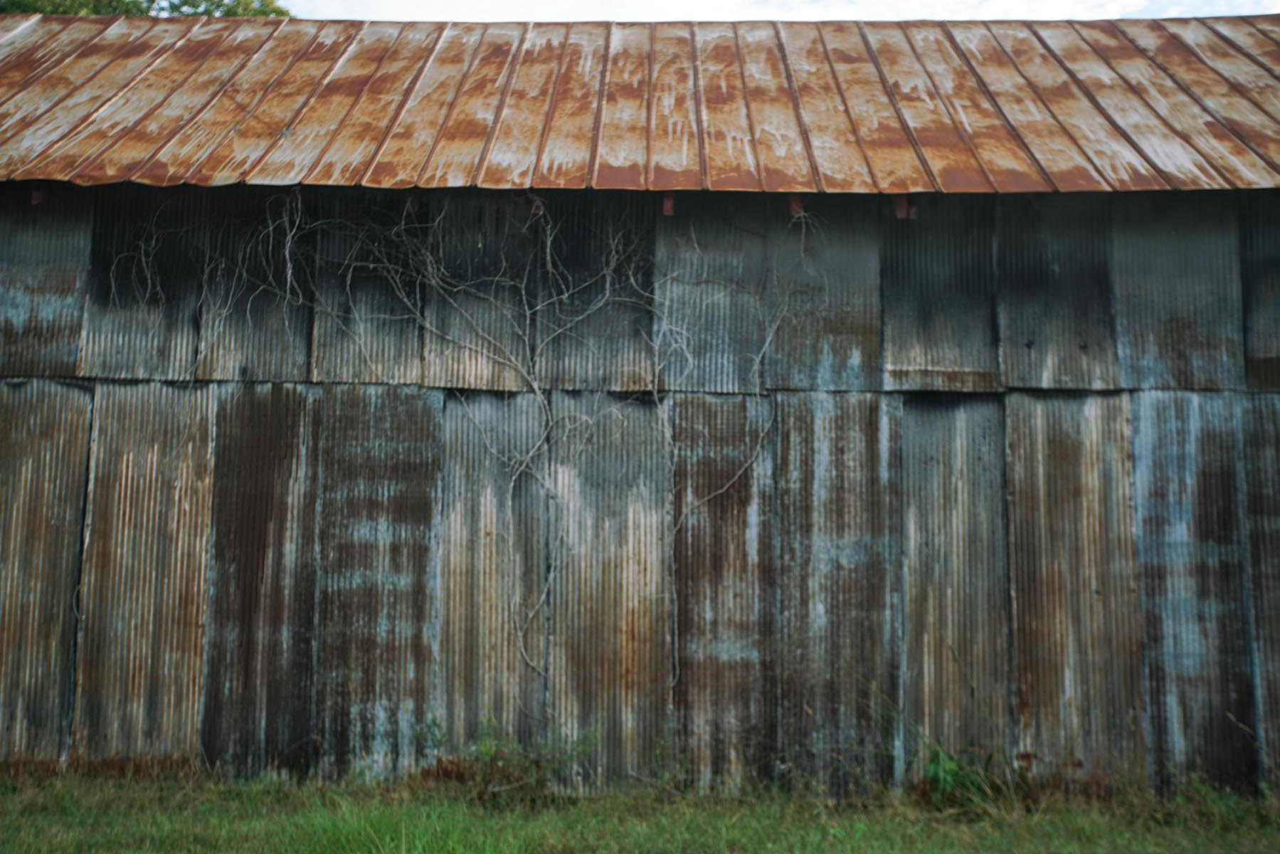 RA_hale county vernacular-07079.jpg