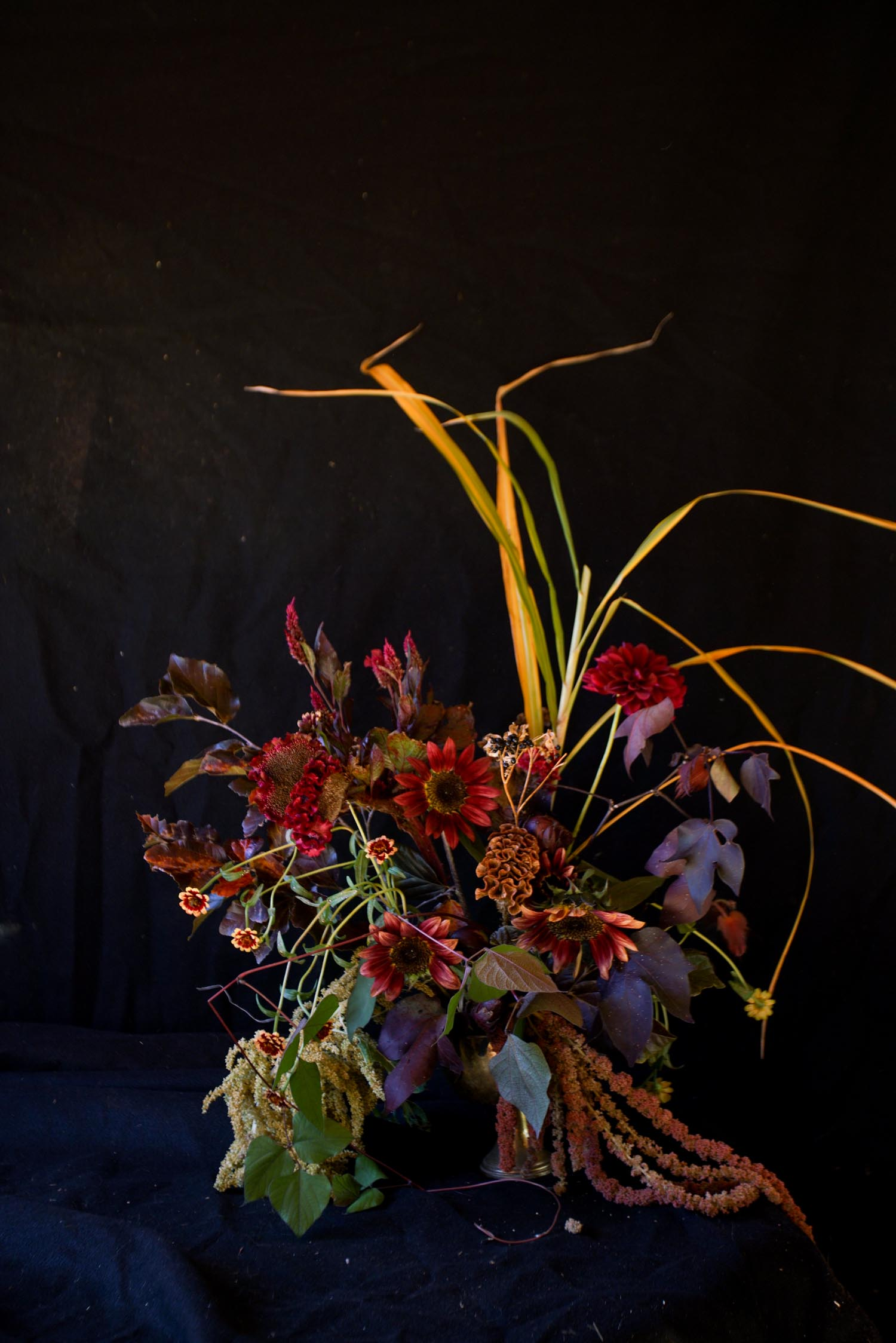 RA_3 porch farm 2016 flower social-2016101709011.jpg