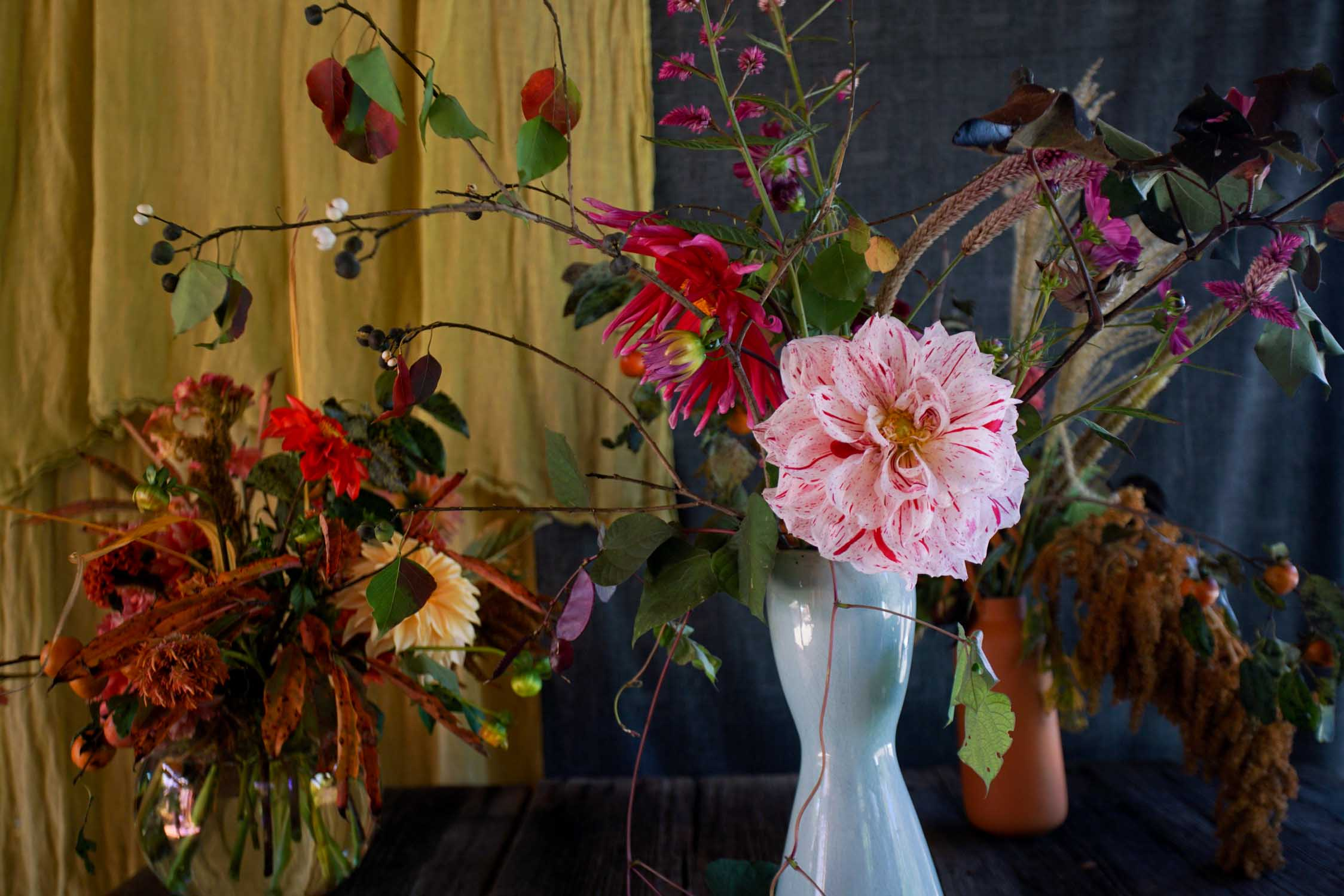 RA_3 porch farm 2016 flower social-2016101709118.jpg