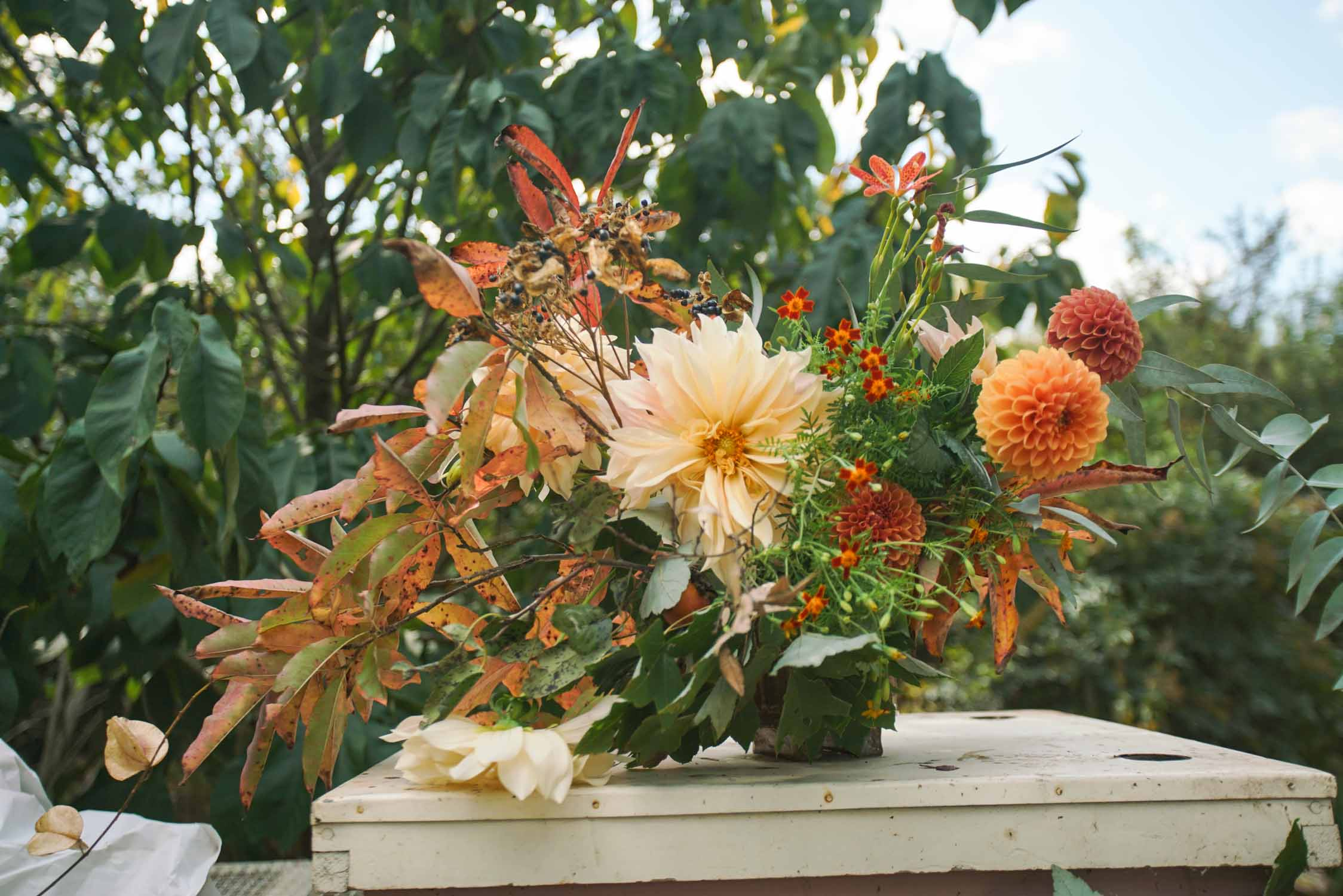 RA_3 porch farm 2016 flower social-2016101709126.jpg