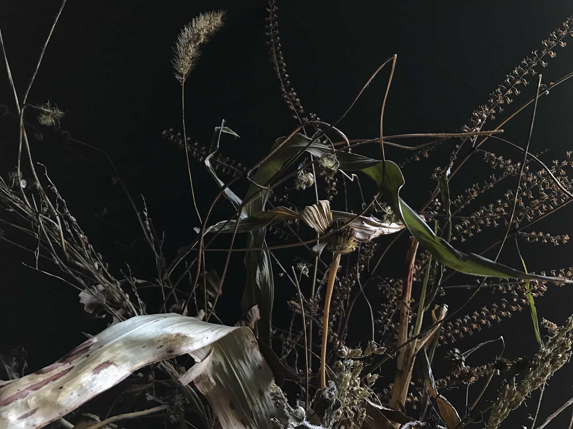 weeds as ingredients-0877.jpg