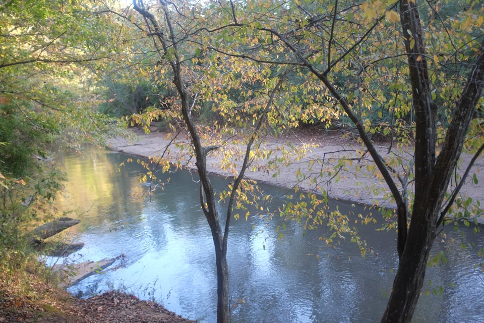 rw-by the river-3892.jpg