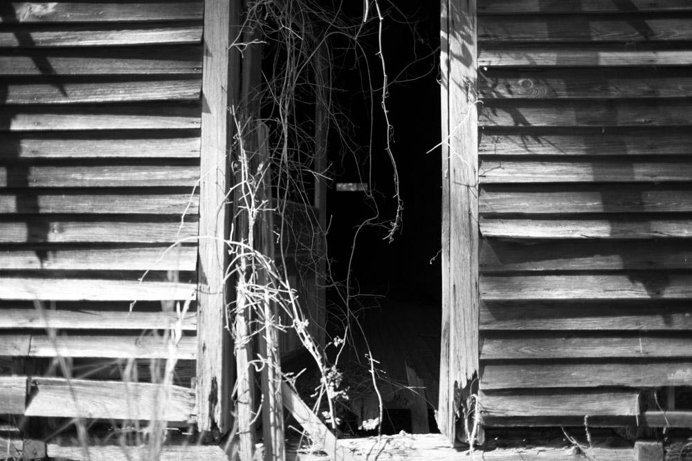 KB_abandoned-shack-9088.jpg