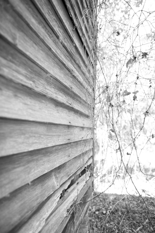 KB_abandoned-shack-9109.jpg