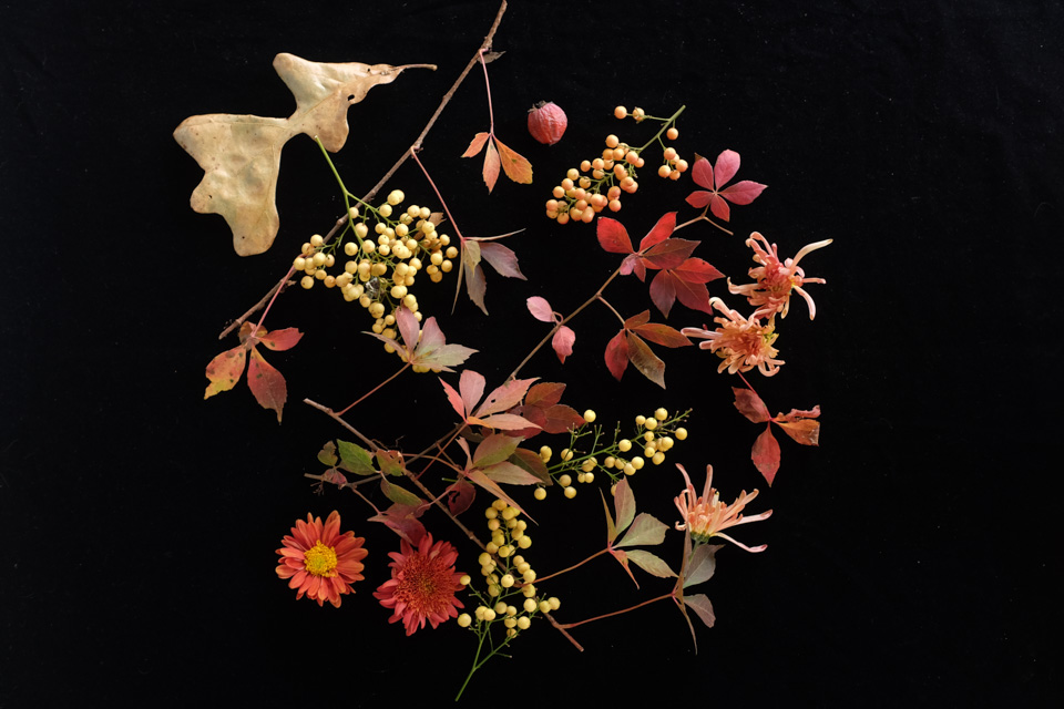 rw-fall arrangement-4911.jpg