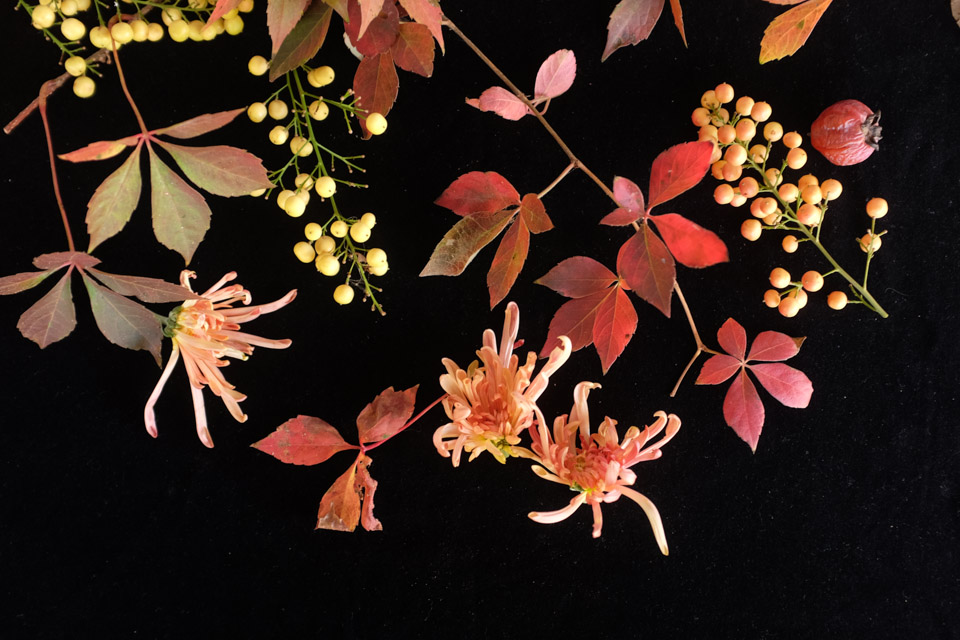 rw-fall arrangement-4922.jpg