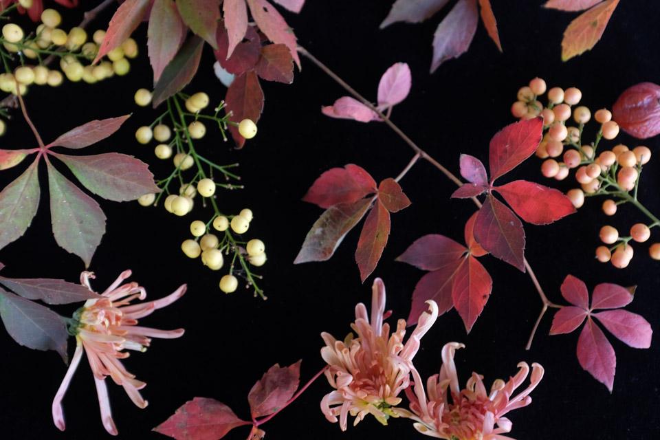 rw-fall arrangement-4919.jpg