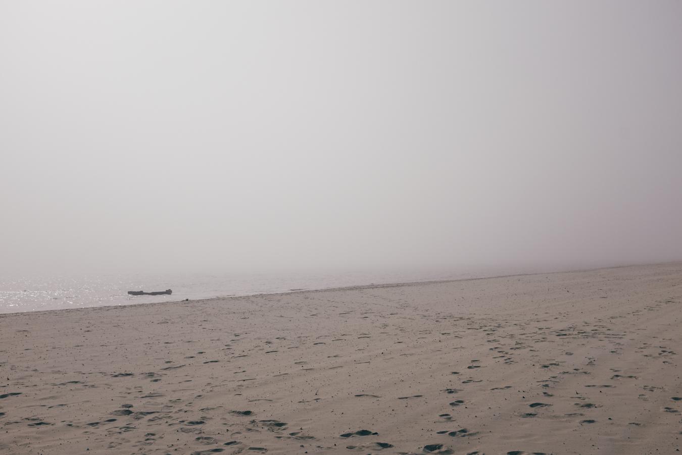 KK_foggybeach-1470.jpg