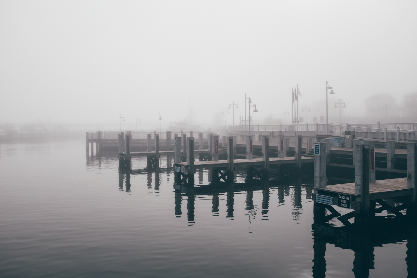 KK_foggybeach-1578.jpg