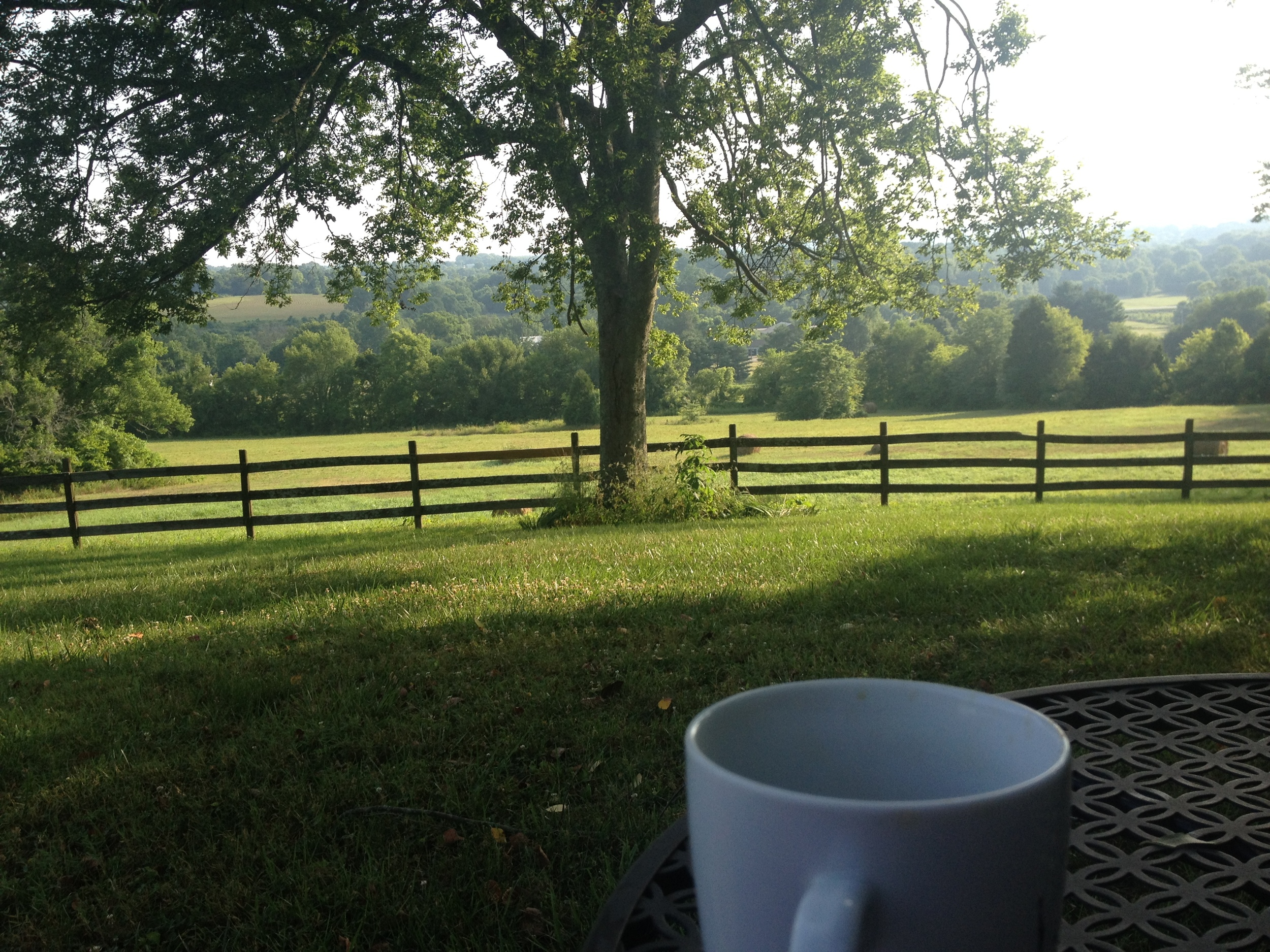 Morning coffee and my view