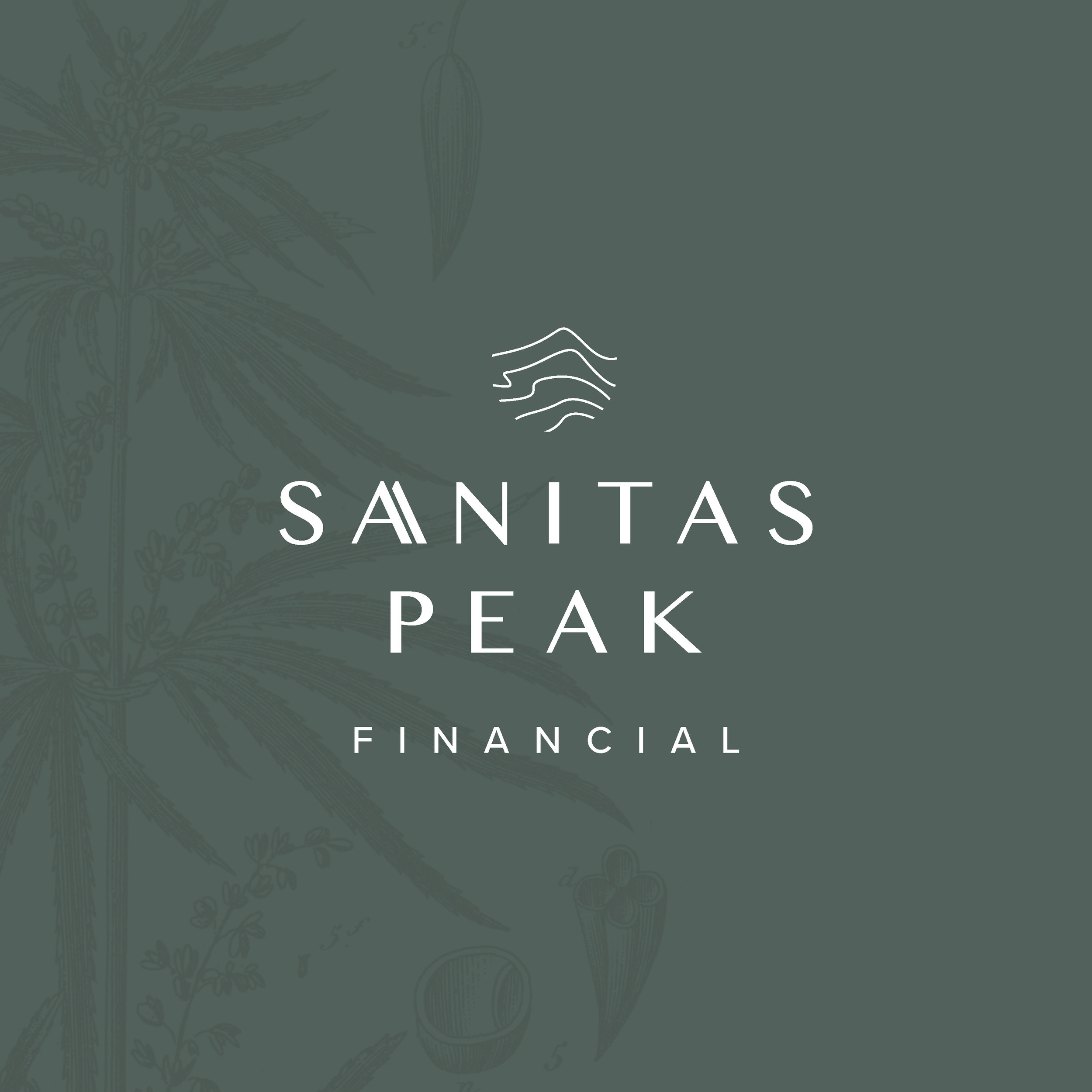 Sanitas Peak Financial -  branding and website design