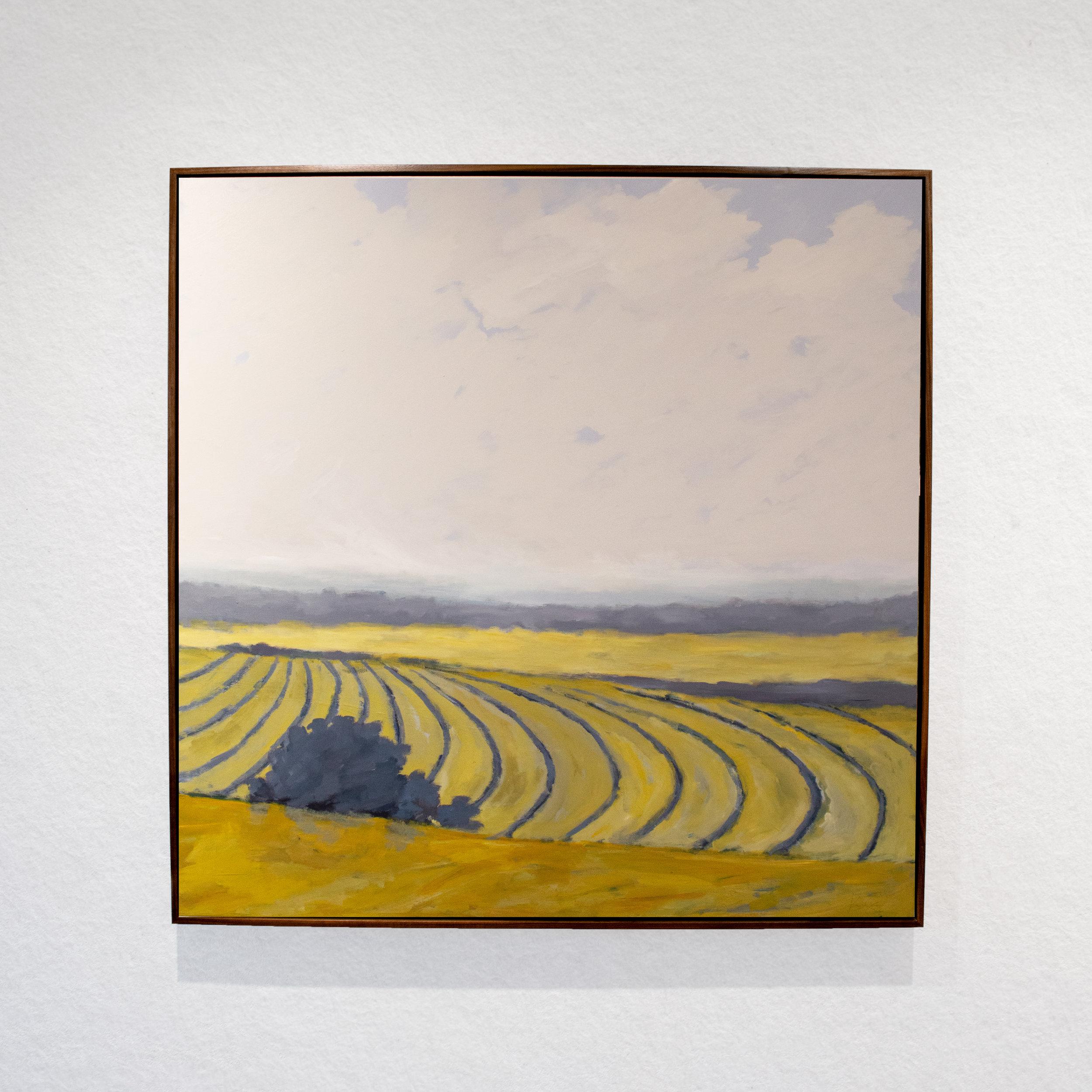 Ocre_Field_Landscape.jpg