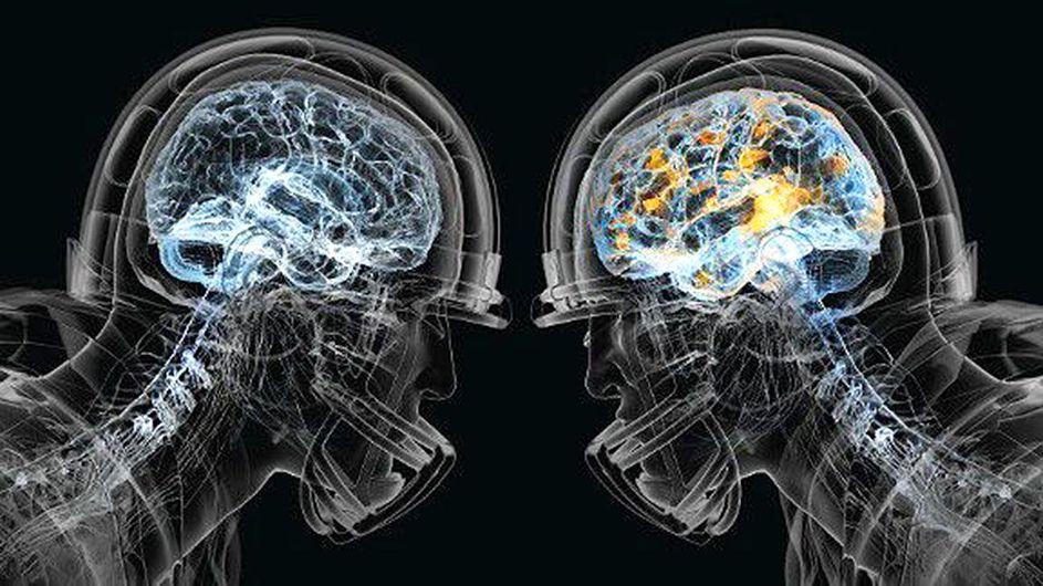 Concussion Center of Charleston -