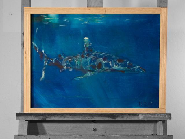 g-shark1.jpg