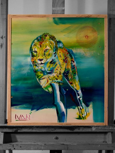 cheeta1.jpg