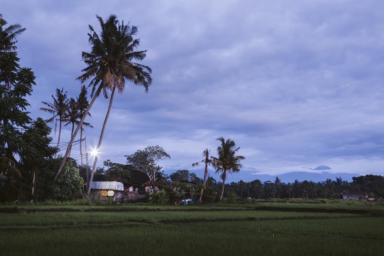 Bali 2018 (1).jpg