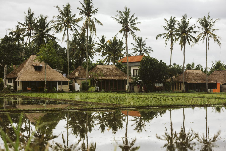 Bali 2018 (7).jpg