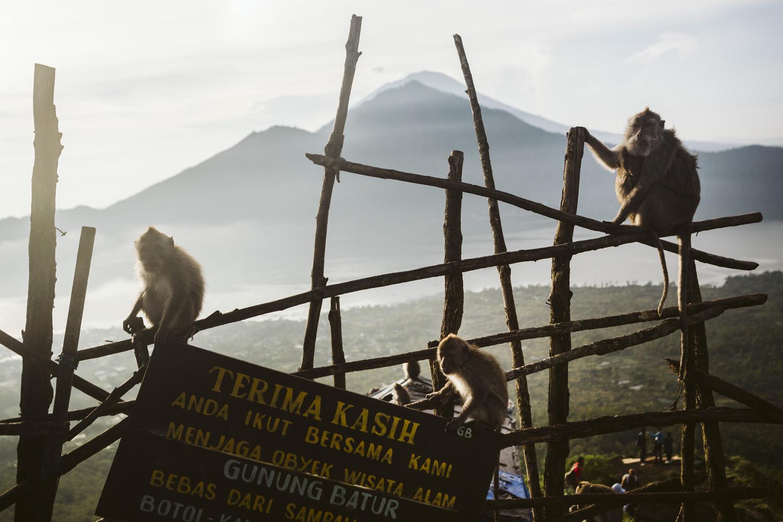 Bali 2018 (303).jpg