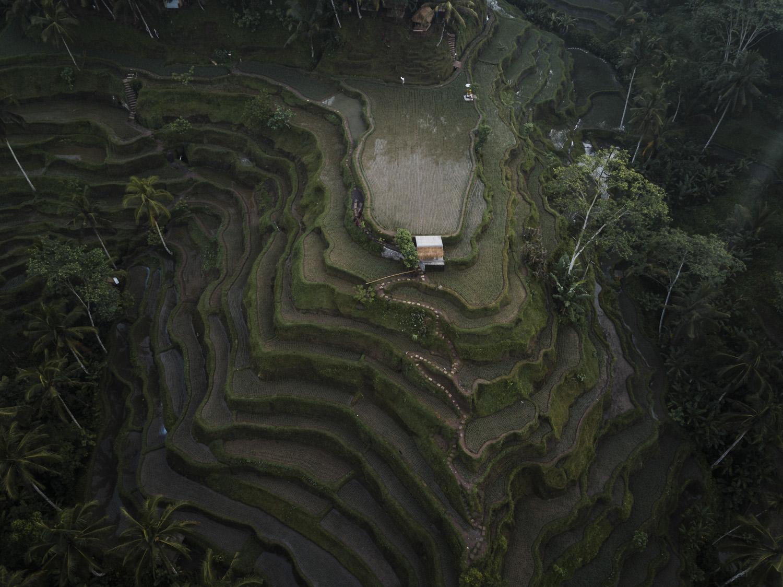 Bali 2018 (371).jpg