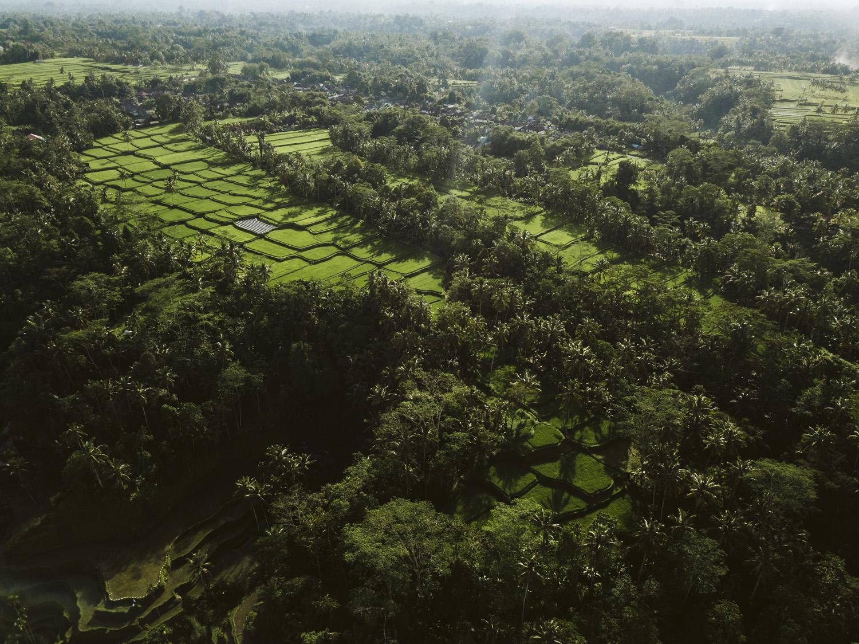 Bali 2018 (374).jpg
