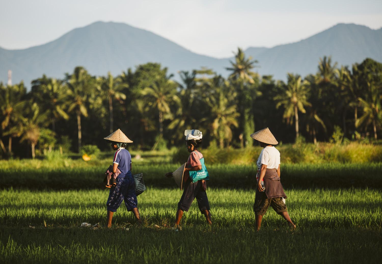 Bali 2018 (411).jpg