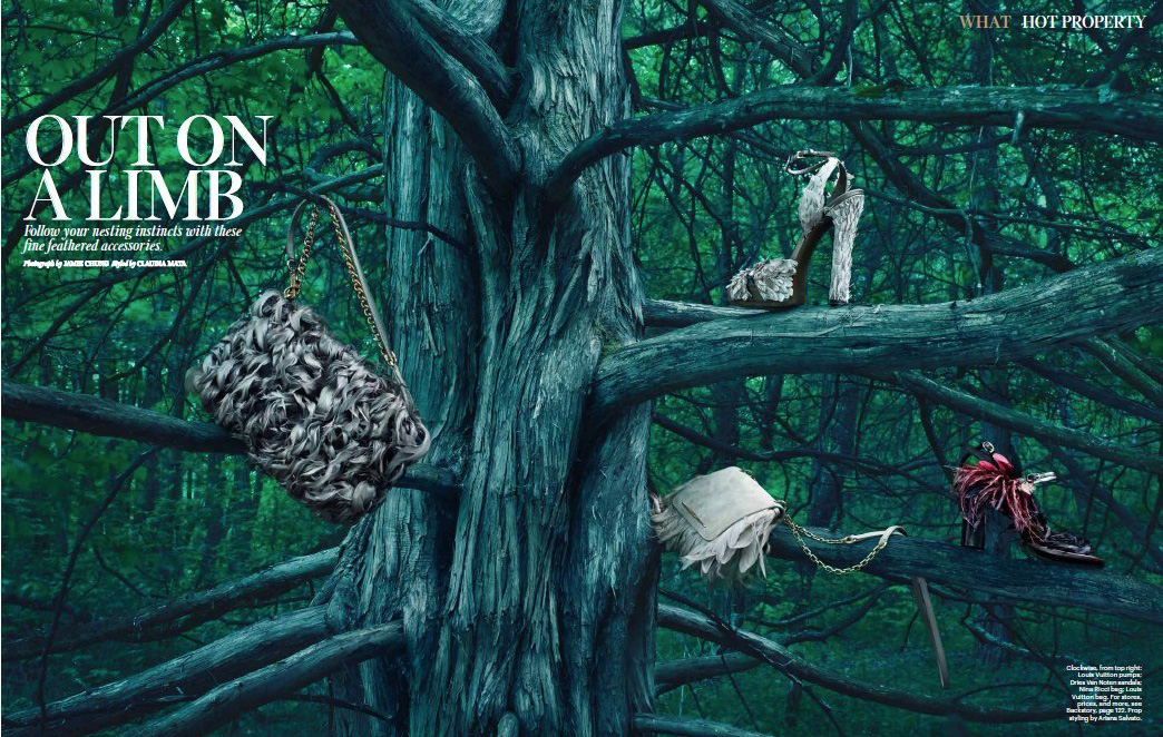 W Mag - Out on a Limb