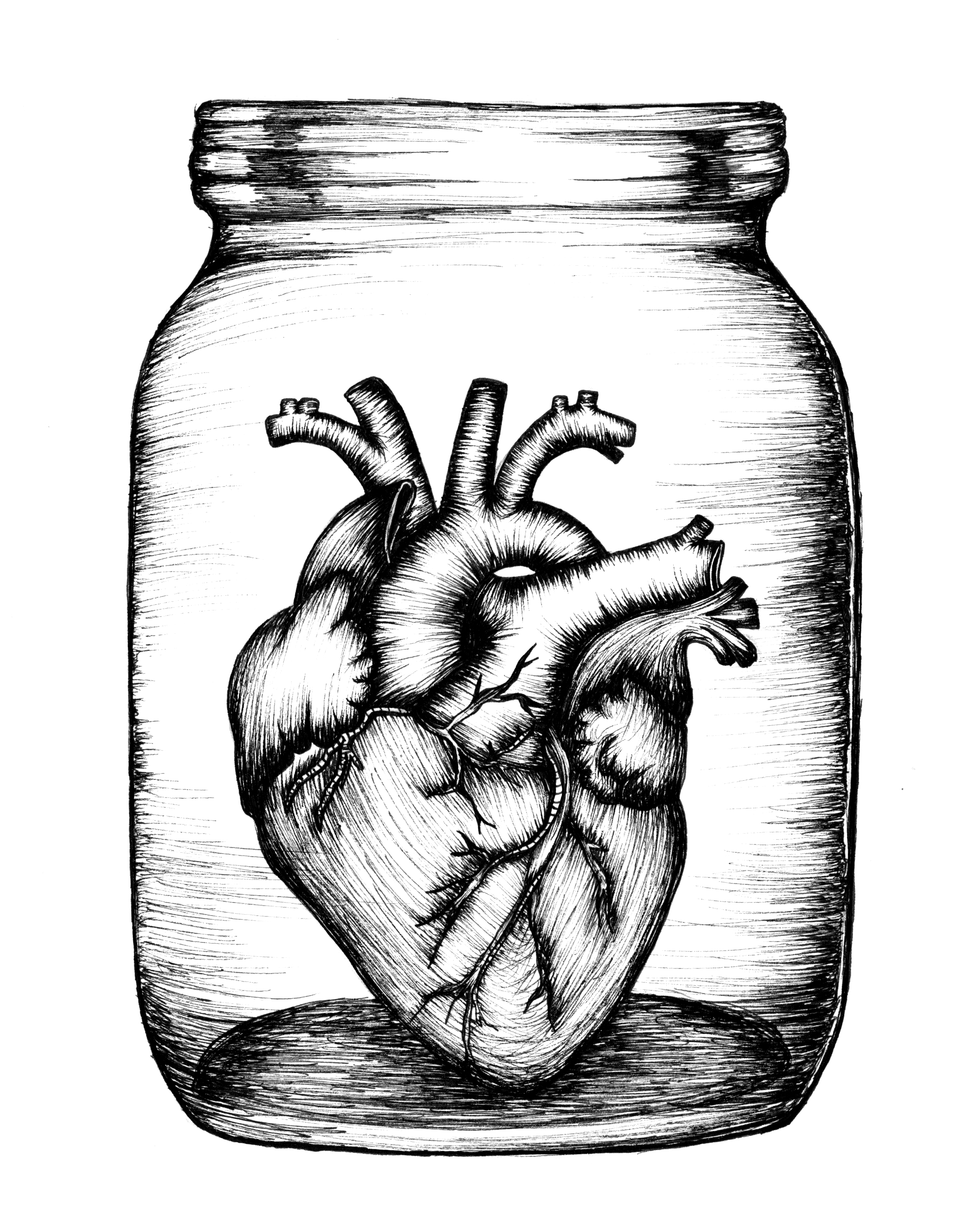 illustration15_coeur.jpg