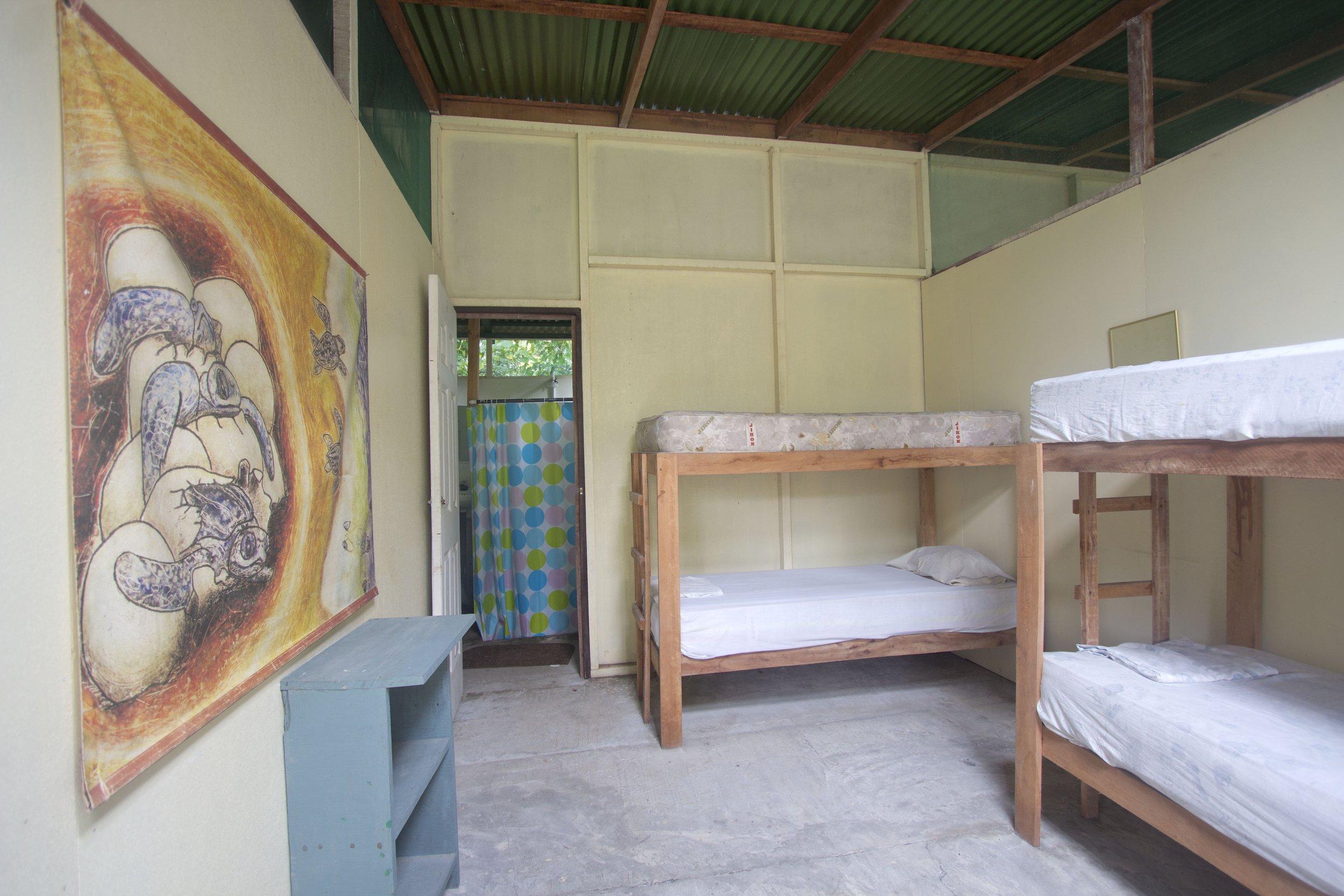Volunteer lodging at Las Tortugas