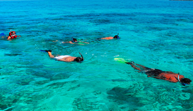 After lunch, we will do one more turtle research snorkel and then have free time to relax, paddle, or swim