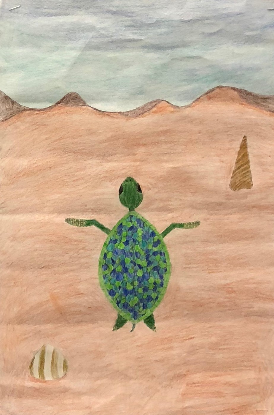 Turtle colored pencil.jpg