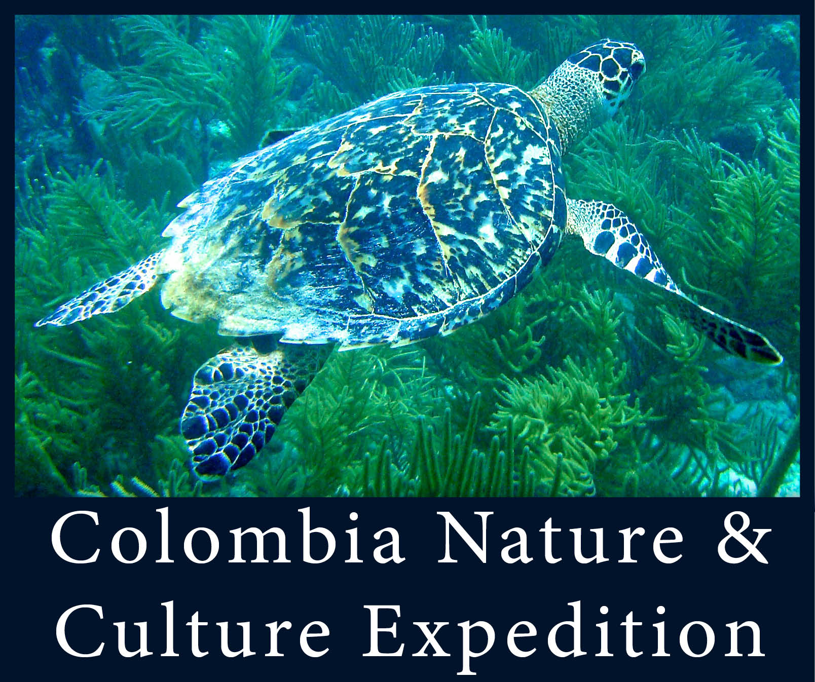 Colombia Expedition 2.jpg