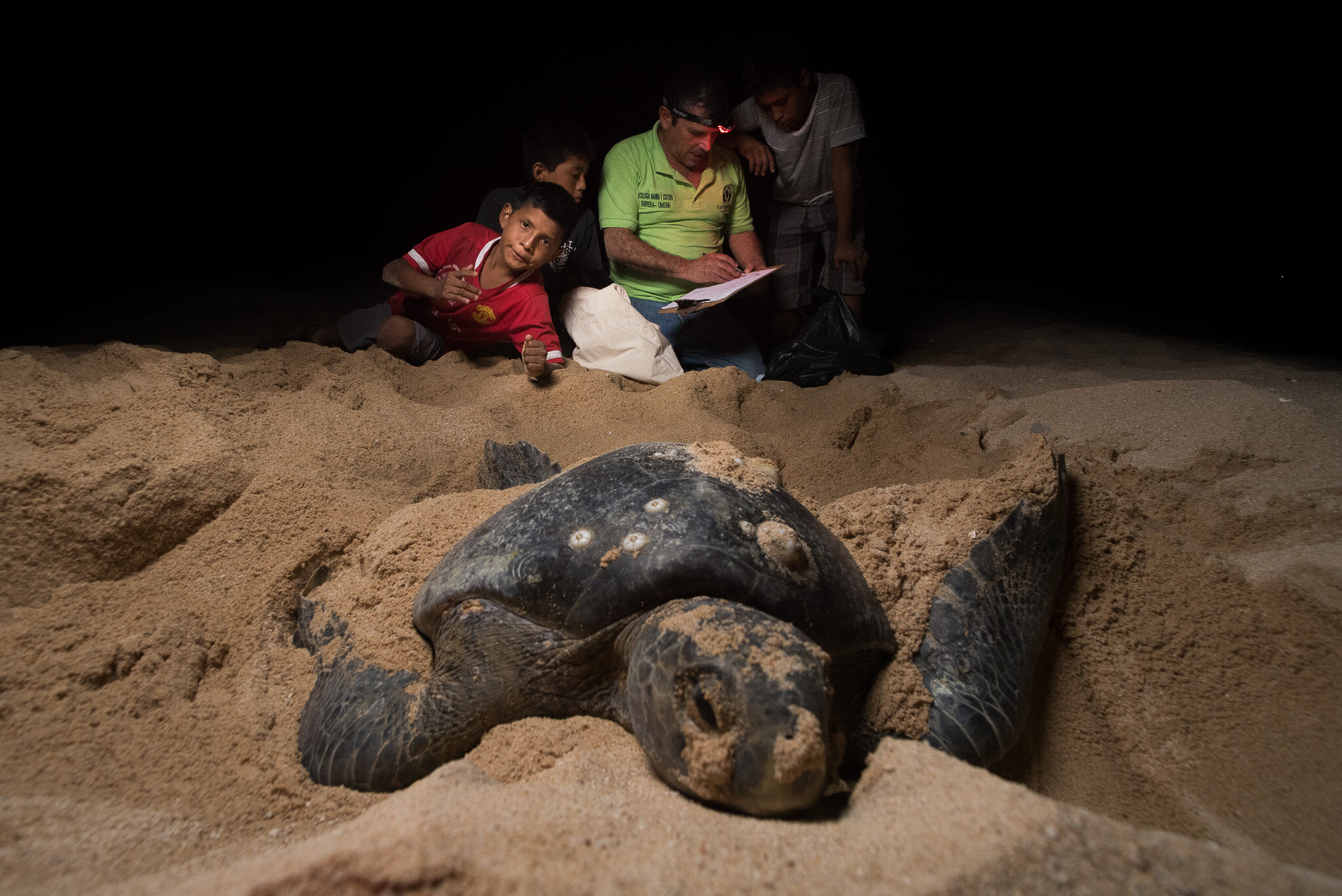 Local kids working with a black turtle