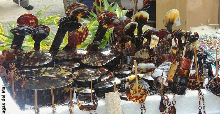Tortoiseshell for sale in Cartagena (Fundacion Tortugas del Mar)