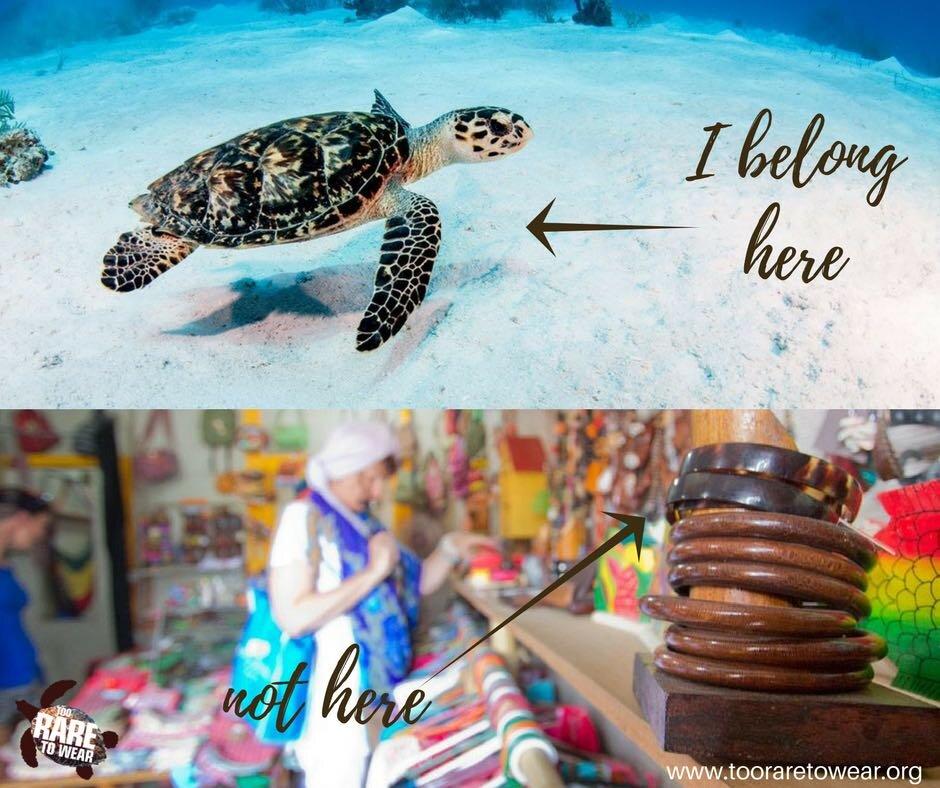 I belong here.jpg