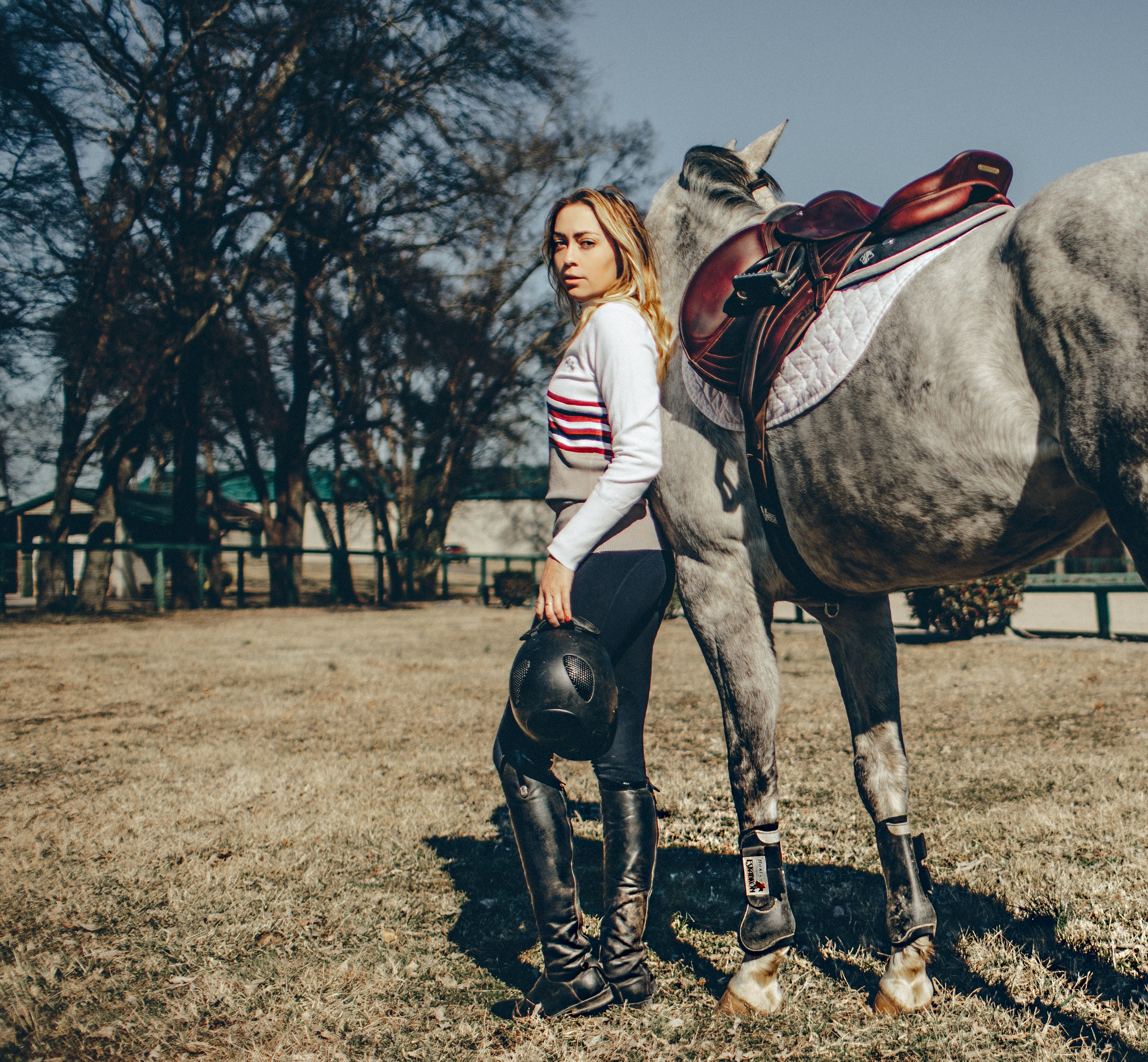 equine-couture-breeches.jpg