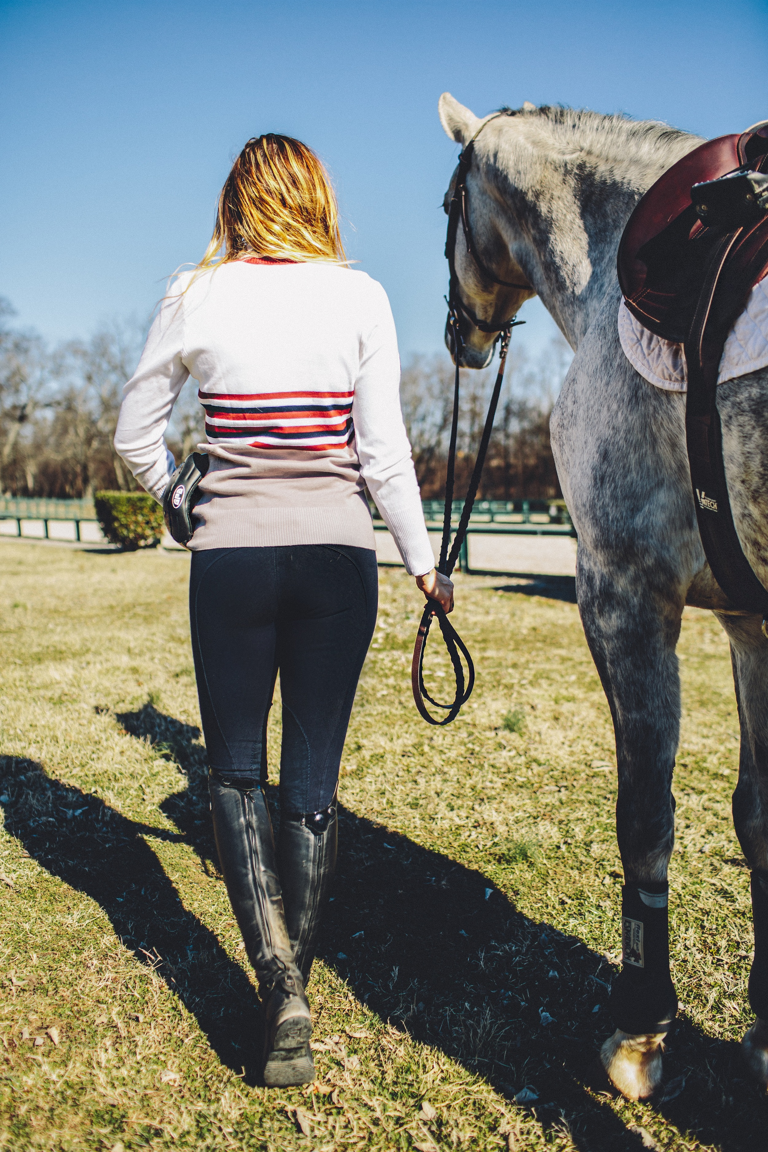 equine-couture-regatta-breeches.jpg